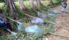 파푸아뉴기니 카리다 마을에서 부족 학살 일어나